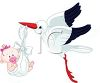 Cartoon of the Stork Bringing a Baby Girl Home clipart