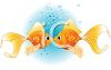Kissing Goldfish clipart