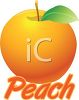 Digital Peach with the Word Peach clipart