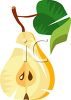 Pear Halved on the Tree clipart