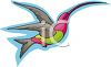Colorful Hummingbird clipart