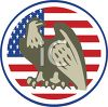 American Eagle and Flag Emblem clipart