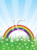 Rainbow Over a Field of Daisies clipart