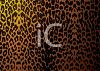 Safari Animal Skin Pattern clipart