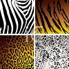 Collection of Animal Skins Patterns clipart