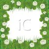 Clover with Flowers Page Frame clipart