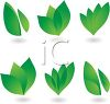 Collection of Green Leaf Elements clipart