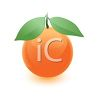 Glossy 3D Orange with Leaves clipart
