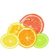 Slices of Citrus Fruits clipart