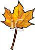 Orange and Brown Fall Leaf clipart