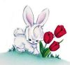 Cute Bunny Playing by Some Tulips clipart