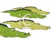 Cartoon Crocodiles  clipart