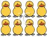 Two Rows of Baby Chicks clipart