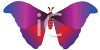 Colorful Moth clipart