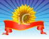 Bright Sunflower with a Red Banner on a Blue Background clipart