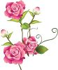 Pretty Pink Roses and Rosebuds clipart