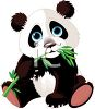 Adorable Baby Panda Bear Eating Bamboo clipart