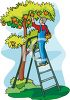 Farmer Picking Peaches or Fruit in an Orchard clipart
