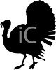 Live Turkey Silhouette clipart