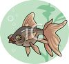 an exotic tropical fish with big bulging eyes clipart