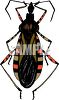 winged insect, a flying bug or beetle clipart