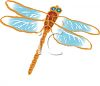 Drawing of a dragonfly clipart