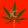 clip art image of a marijuana leaf on a red background clipart