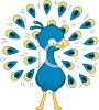 cartoon clip art of a peacock with his beautiful feathers spread out clipart