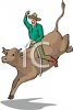 clip art image of a cowboy holding on riding a bull in a rodeo clipart