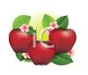 clip art illustration of red shiny apples with green leaves and pink flowers clipart