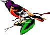 clip art illustration of a purple, orange, black and white bird sitting on a leafy branch clipart