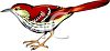 clip art illustration of a bird standing clipart