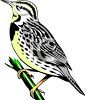 clip art image of a bird standing on a branch clipart