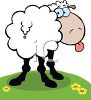 clip art illustration of a sheep standing in the grass sticking out his tongue clipart