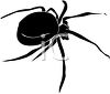 Image of a black spider in a vector clip art illustration clipart