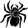 Picture of a black spider in a vector clip art illustration clipart