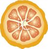 picture of a cut grapefruit on a white background in a vector clip art illustration clipart