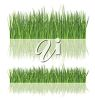 Grass or lawn up close and farther away clipart