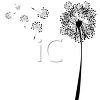 dandelion and seeds in silhouette as a wish is made clipart