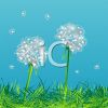 nature scene of dandelion seeds floating away to germinate elsewhere clipart