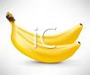 picture of two bananas hooked together in a vector clip art illustration clipart