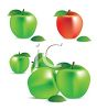 picture of green apples with one red apple in a vector clip art illustration clipart