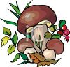picture of mushrooms , berries, and leaves in greenery in a vector clip art illustration clipart