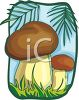picture of two mushroom in the forest in a vector clip art illustration clipart