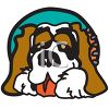picture of a saint bernard dog laying down in a vector clip art illustration clipart