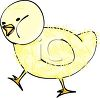 picture of an adorable fuzzy baby chick walking in a vector clip art illustration clipart