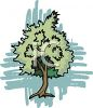 picture of a green bushy tree in a vector clip art illustration clipart