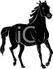 picture of a black horse in a vector clip art illustration clipart