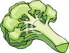 picture of a stalk of fresh broccoli in a vctor clip art illustration clipart