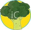 picture of a stalk of fresh broccoli on a yellow background in a vector clip art illustration clipart